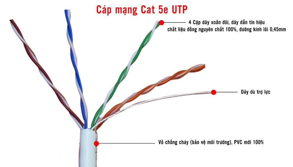 dây cáp mạng amp cat5e