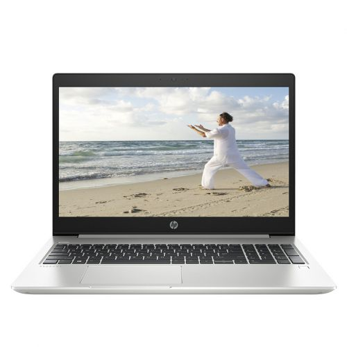 HP Probook 455 G6 6XA87PA