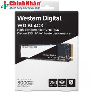 SSD Western M2-2280 250GB WDS250G2X0C